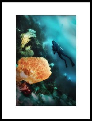 Art print titled Underwater Beauty by the artist Johannes Oei
