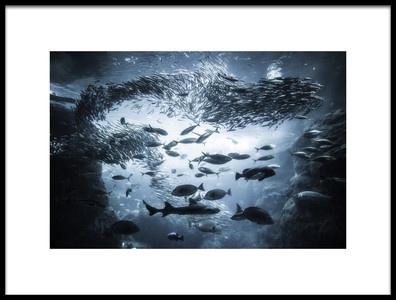 Art print titled Underwater Exploration by the artist Takashi Suzuki