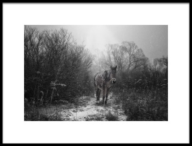 Buy this art print titled Untitled No. 1356 by the artist stanislav hricko