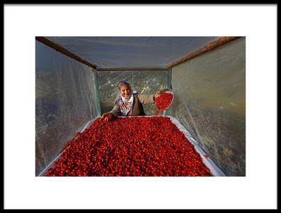 Art print titled Untitled No. 2011 by the artist Mustafa Zengin