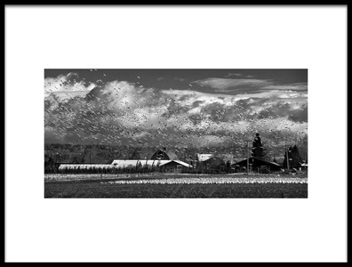 Buy this art print titled Untitled No. 2582 by the artist Paul Kammer