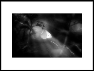 Buy this art print titled Untitled No. 3497 by the artist Martin Hardman