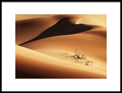 Art print titled Untitled No. 3778 by the artist Ramin Amani