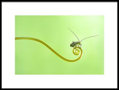 Art print titled Untitled No. 5419 by the artist Kutub Uddin