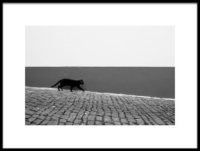Art print titled Untitled No. 6721 by the artist Rui Caria