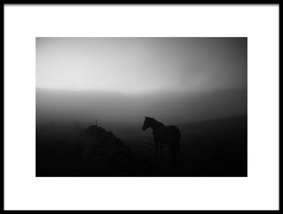 Art print titled Untitled No. 6790 by the artist Rui Caria