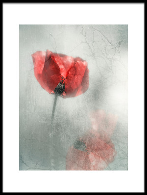 Buy this art print titled Untitled No. 800 by the artist Desislava Ignatova