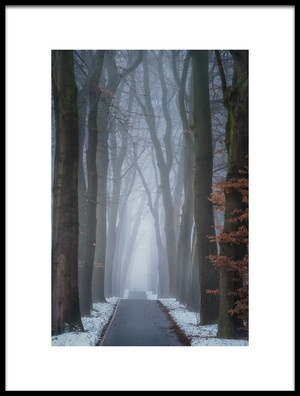 Art print titled Up and Down by the artist Ellen Borggreve