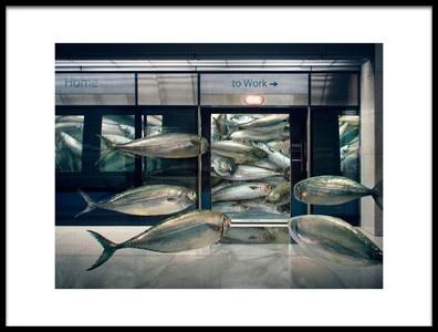 Art print titled Urban Sardine by the artist Andrew Kow