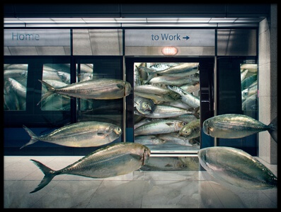 Art print titled Urban Sardine by the artist Andrew Kow
