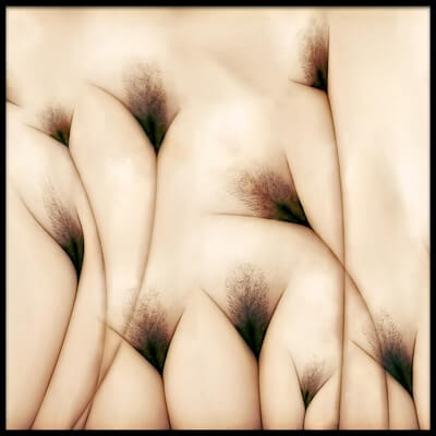 Buy this art print titled Vaginae Terram by the artist Carlos P. Vazquez
