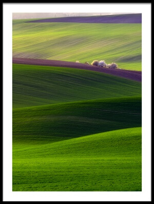 Buy this art print titled Verdant Land by the artist Piotr Krol (Bax)