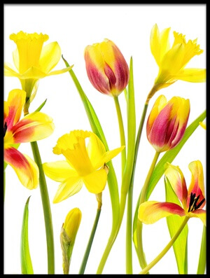 Art print titled Vibrant Spring by the artist Jacky Parker