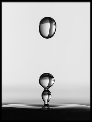 Art print titled Water Drops by the artist Jacqueline Hammer