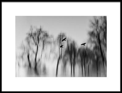 Art print titled Water Trees by the artist Jacqueline van Bijnen