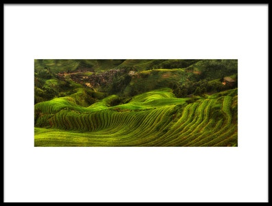Buy this art print titled Waves of Rice  the Dragons Backbone by the artist Max Witjes