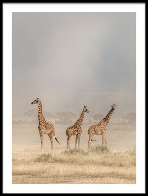 Buy this art print titled Weathering the Amboseli Dust Devils by the artist Jeffrey C. Sink