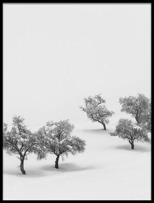 Art print titled White Carpet by the artist Antonio Carrillo Lopez