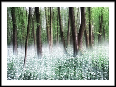 Buy this art print titled Wild Garlic by the artist Burger Jochen