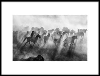 Art print titled Wild Horses by the artist mehmet bedir