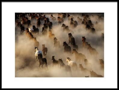 Buy this art print titled Wild Horses by the artist mehmet bedir