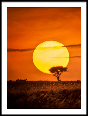 Buy this art print titled Wild Sunrise by the artist Lucie Bressy