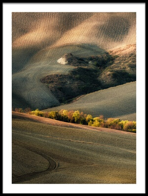 Art print titled Wild Tuscany by the artist Marek Boguszak