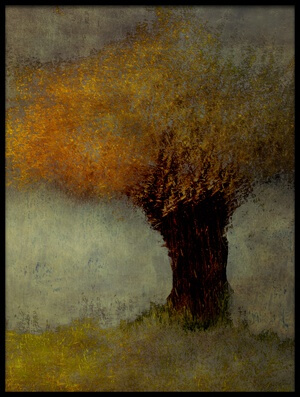 Art print titled Willow by the artist Nel Talen