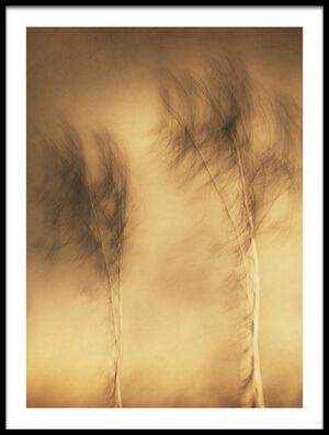 Buy this art print titled Wind by the artist Gustav Davidsson