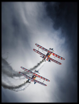 Buy this art print titled WingWalkers by the artist Leon
