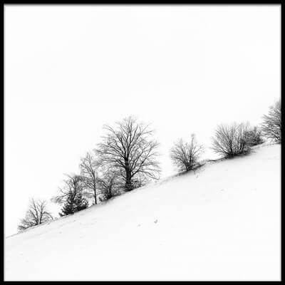 Buy this art print titled Winter by the artist Marius Cinteză