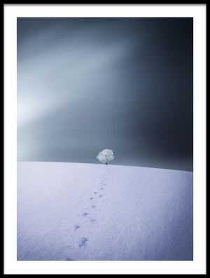 Buy this art print titled Winter by the artist Bess Hamiti