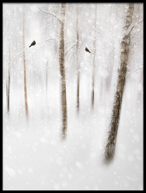 Buy this art print titled Winter Birches by the artist Gustav Davidsson
