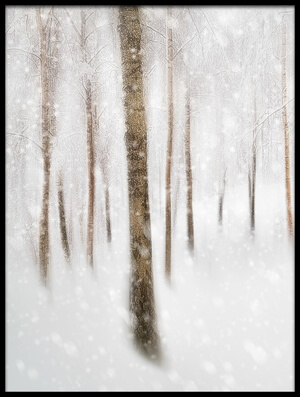 Buy this art print titled Winter Birches II by the artist Gustav Davidsson