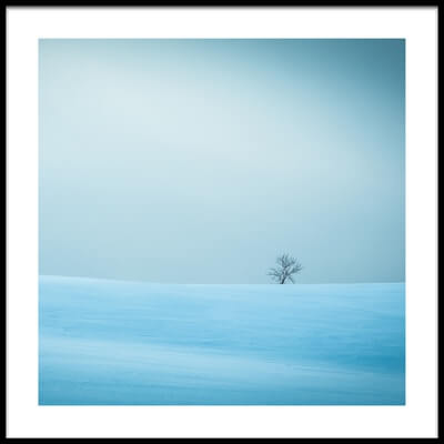 Buy this art print titled Winter In Solitude II by the artist Miroslaw