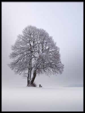 Art print titled Winter Light by the artist Nicolas Schumacher