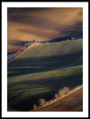Art print titled Winter Long Shadows by the artist Marek Boguszak