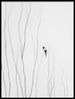 Buy this art print titled Winter Moment II by the artist Shan Jiang