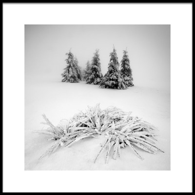 Art print titled Winter Scenery by the artist Daniel Řeřicha