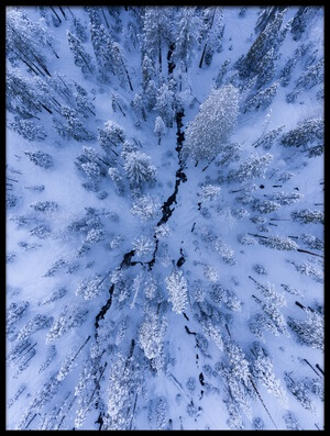 Art print titled Winter Wonderland by the artist Gerald Macua
