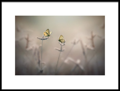 Art print titled With You by the artist Edy Pamungkas