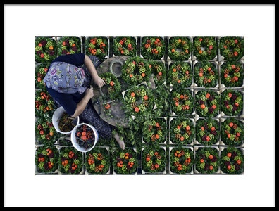 Buy this art print titled Wreath Making by the artist Caner Başer
