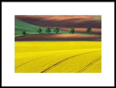 Art print titled Yellow by the artist Ales Komovec