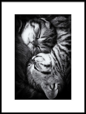 Buy this art print titled Yin and Yang by the artist Andrea Jancova