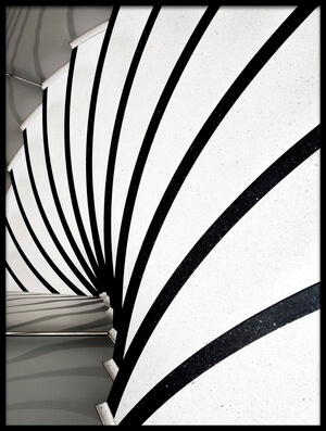 Buy this art print titled Zebra Steps by the artist Linda Wride