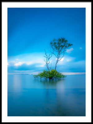 Art print titled Zen Tree by the artist Sven Kohnke