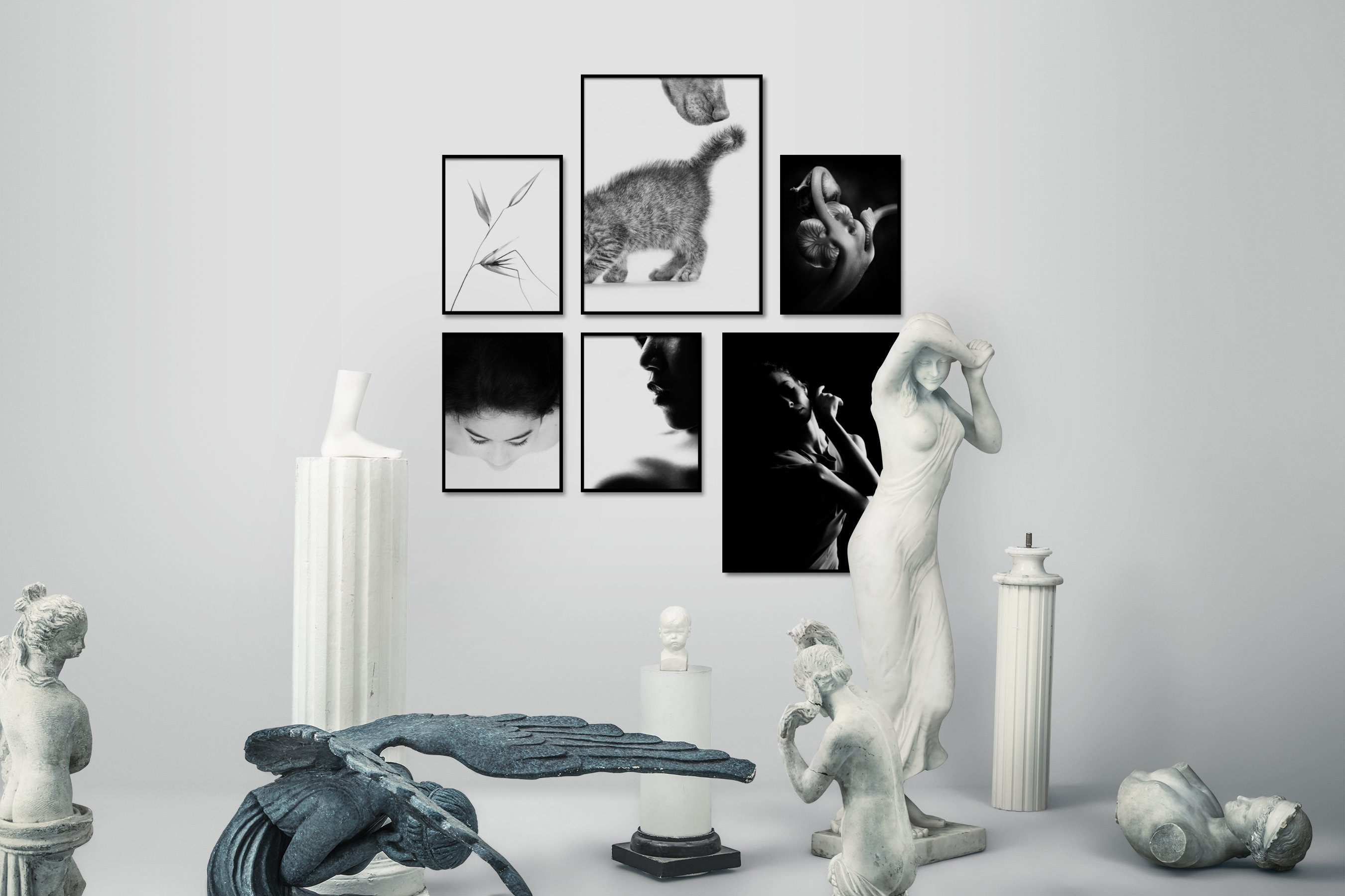 Gallery wall idea with six framed pictures arranged on a wall depicting Black & White, Bright Tones, For the Minimalist, Flowers & Plants, Mindfulness, For the Moderate, Animals, Fashion & Beauty, and Dark Tones