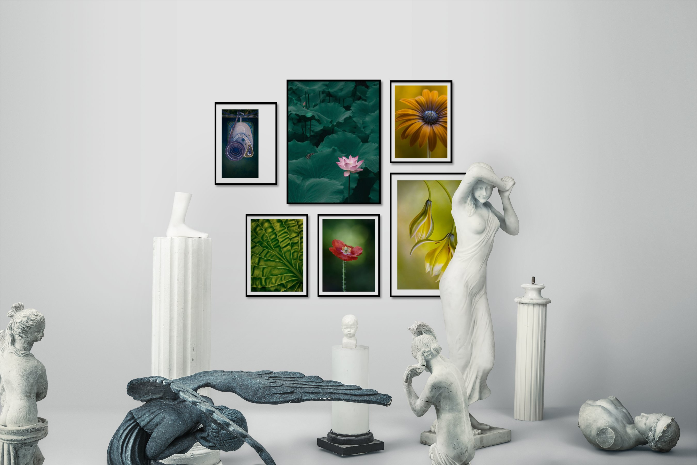 Gallery wall idea with six framed pictures arranged on a wall depicting For the Moderate, Flowers & Plants, and For the Minimalist