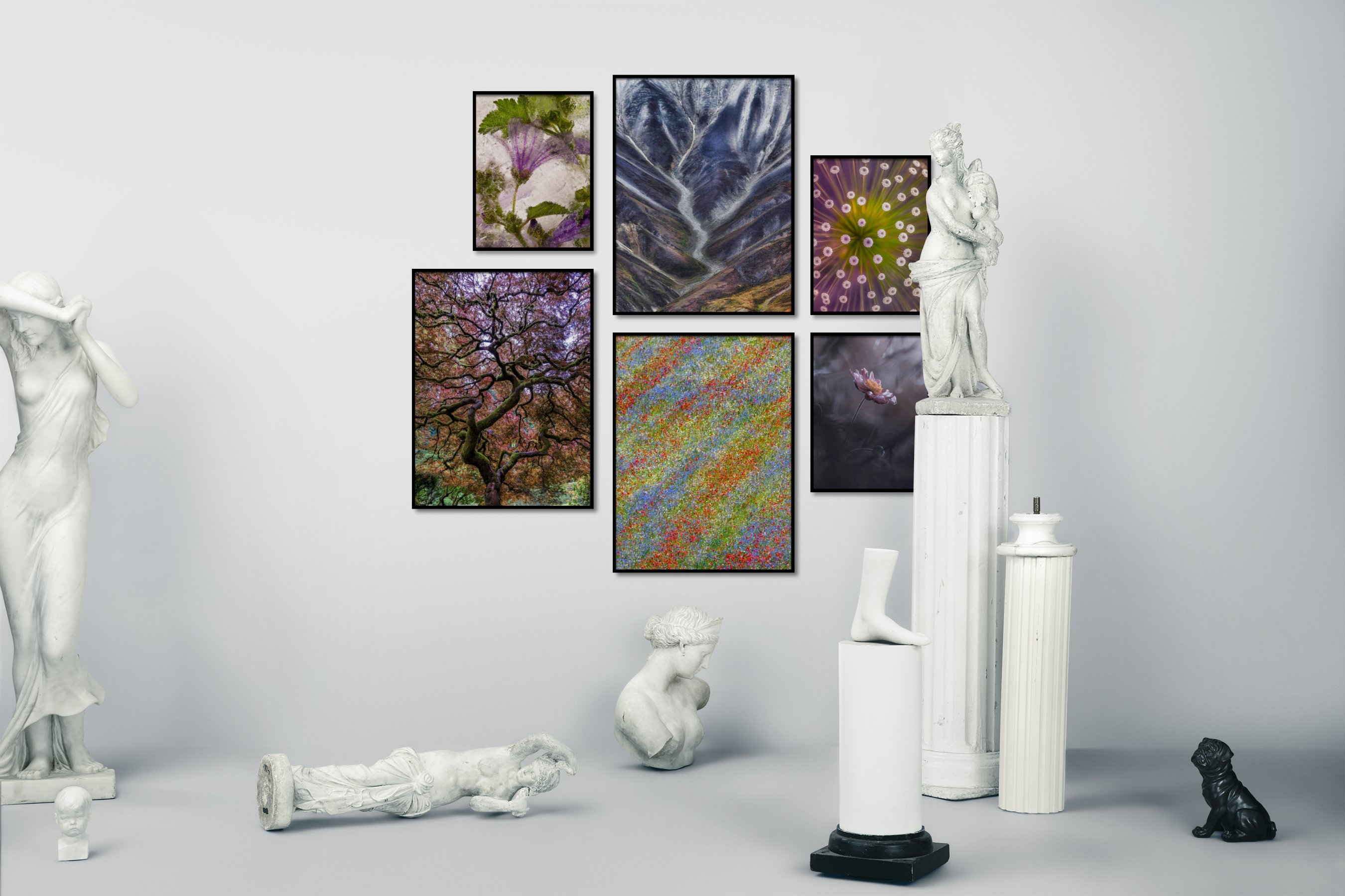 Gallery wall idea with six framed pictures arranged on a wall depicting For the Moderate, Flowers & Plants, Nature, Colorful, and For the Maximalist