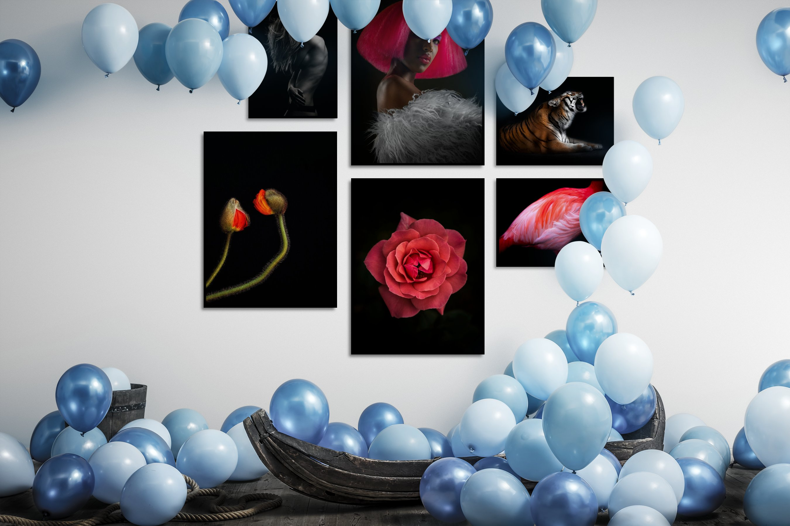 Gallery wall idea with six framed pictures arranged on a wall depicting Fashion & Beauty, Black & White, Dark Tones, For the Minimalist, Vintage, Flowers & Plants, Colorful, and Animals